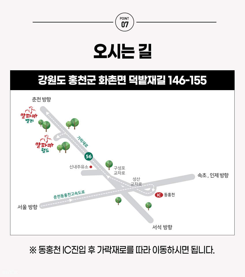 홍천 알파카월드